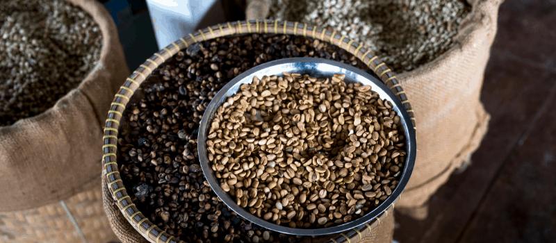 Wat gebeurt er met de koffieboon wanneer deze wordt gebrand